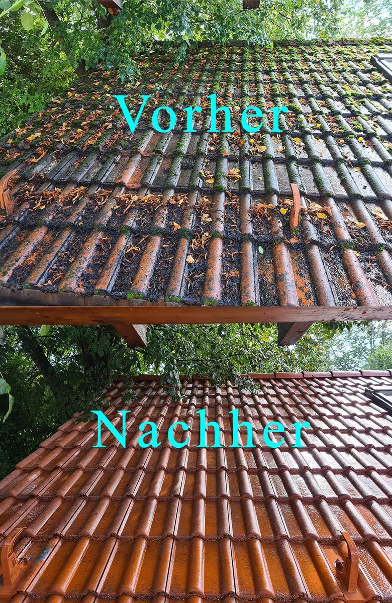 Vorher / Nachher: Dachreinigung